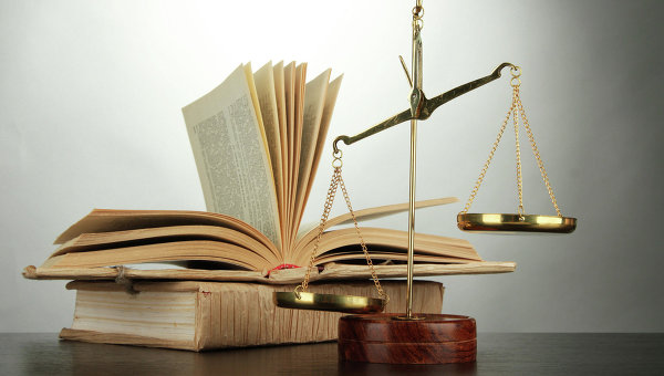 Правоприменение и правозащитная система (теоретич...